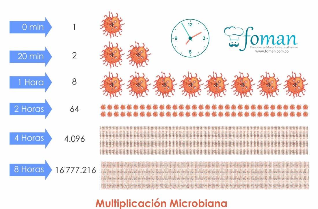 Multiplicacion_Bacteriana_FOMAN