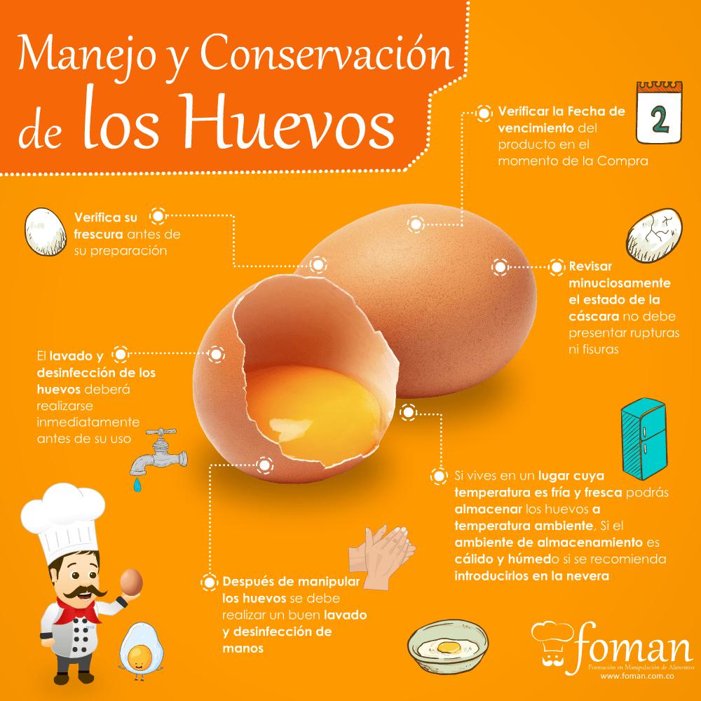 Manejo y conservacion de los huevos FOMAN