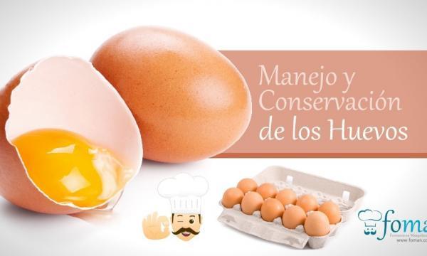 Conservación de los Huevos