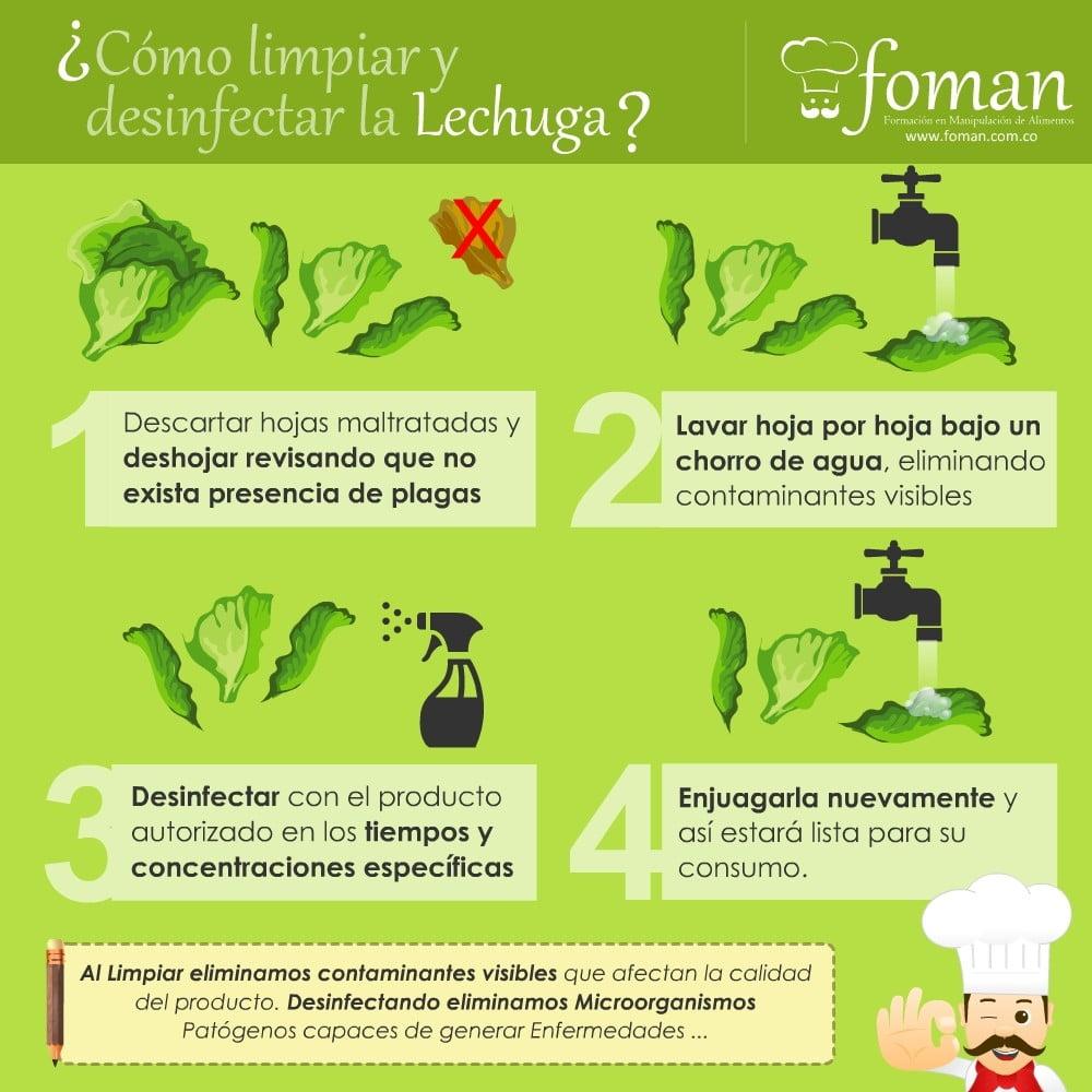 Lechugas m s frescas y seguras for Limpieza y desinfeccion de alimentos