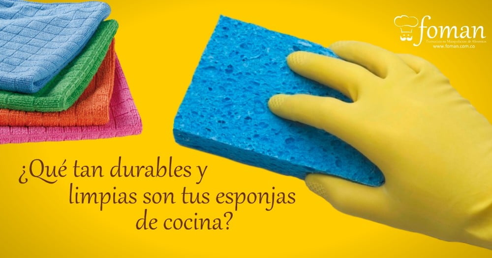 esponjas de cocina