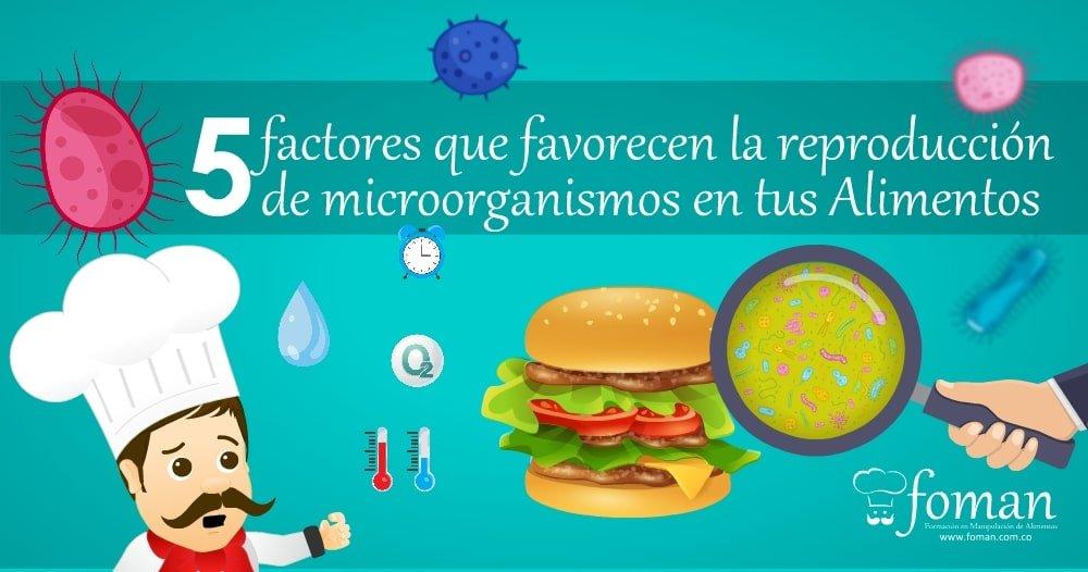 5 factores que favorecen la reproducción de los microorganismos en los alimentos